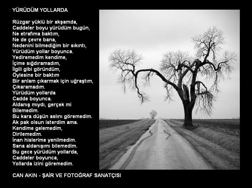 http://img.antoloji.com/siir/media/06/www_antoloji_com_949006_667.JPG