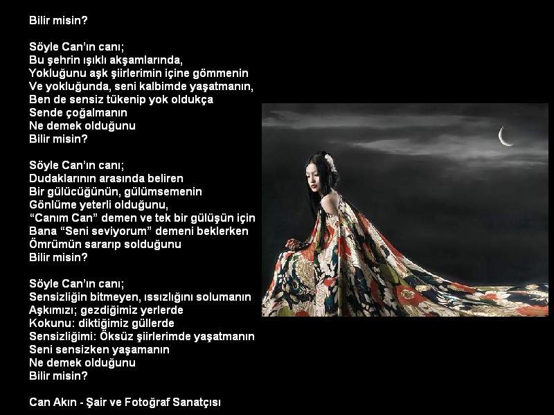 http://img.antoloji.com/siir/media/17/www_antoloji_com_926317_295.JPG
