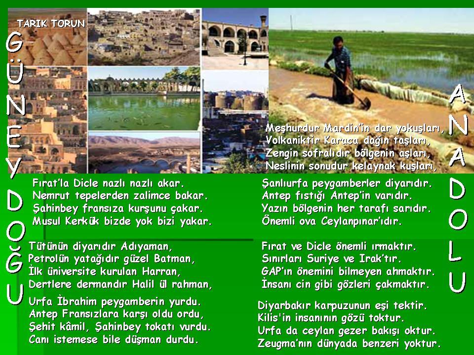 G�neydo�u Anadolu