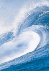 Okyanustaki Rüzgar
