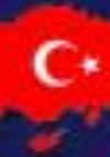 Mehmet Türkoğlu