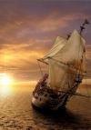 Turuncu Gemi
