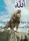 Enes Muhammed