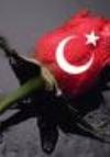Mehmet Fatih Yıldız