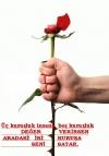 Sevgi Tosun