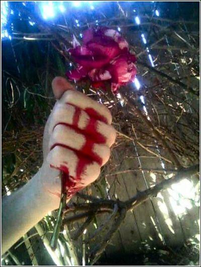 Suat Kırçiçek